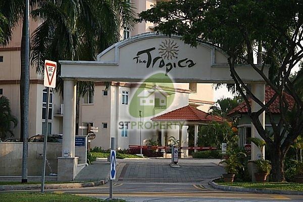 The Tropica