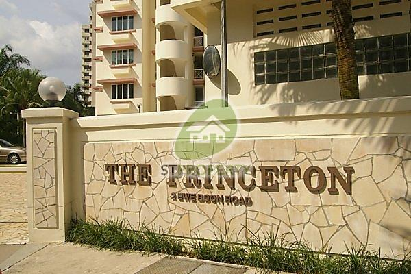 The Princeton