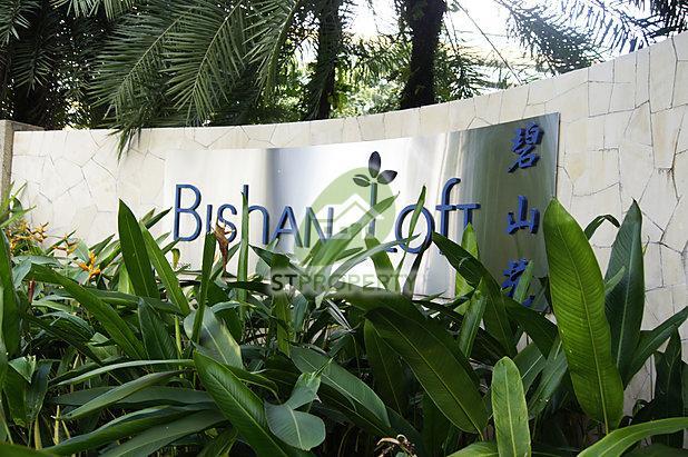 Bishan Loft