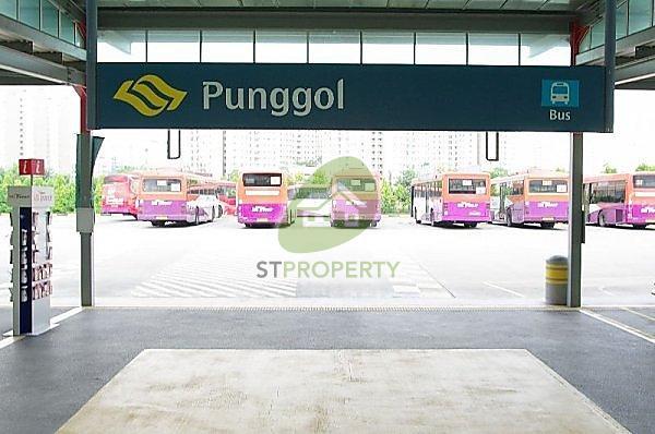 308C Punggol Walk