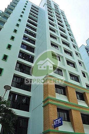 673A Jurong West Street 65