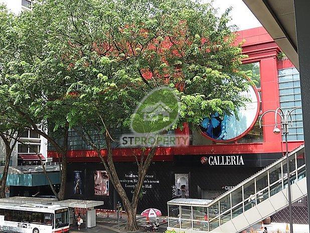 Dfs Galleria Scottswalk